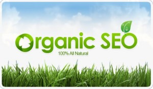 Organic SEO Services: 100% All Natural